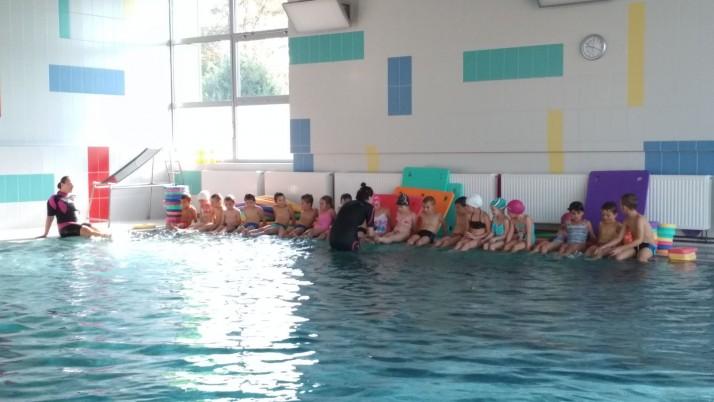 Přípravný plavecký kurz – galerie