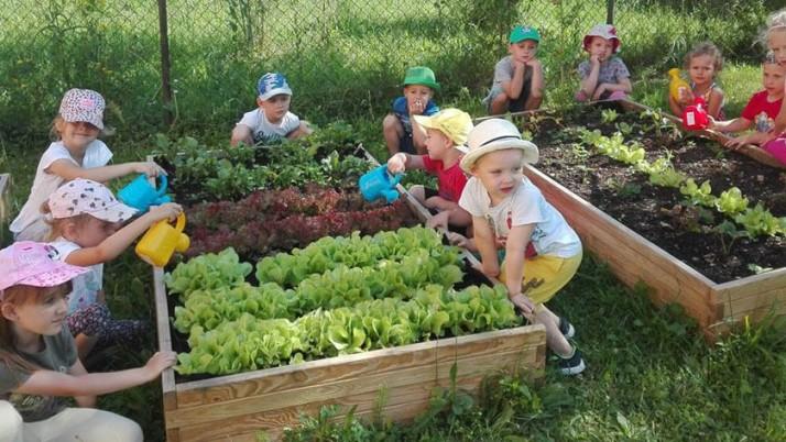 Obnovení provozu mateřské školy od 25.5.2020 a  letních prázdninách